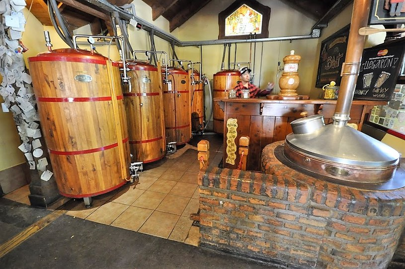 Cerveza Artesanal Beagle - najdalej wysunięty na południe browar na świecie /materiały prasowe