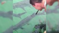 Chciał nakarmić ryby. Tego się nie spodziewał