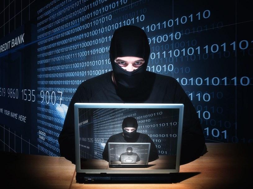 Chińscy hakerzy z Hidden Lynx to prawdziwa elita /123RF/PICSEL