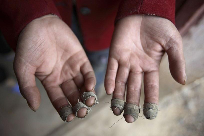 Chiny. Dłonie pracownika plantacji bawełny /Getty Images/Flash Press Media