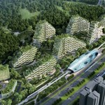 "Chiny już budują ""leśne miasto"""