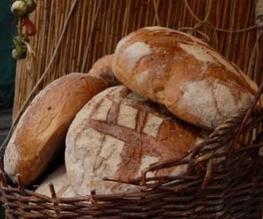 Chleb nie tuczy