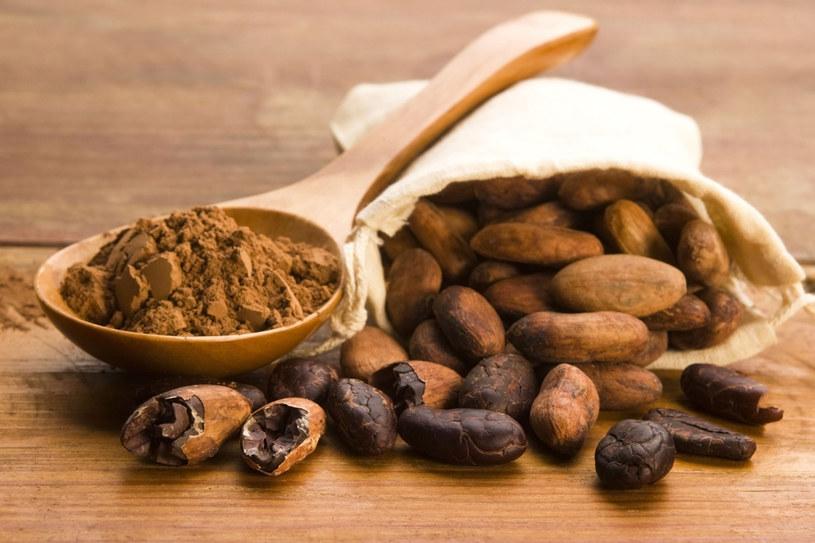 Chociaż czekolada wytwarzana jest z ziaren kakaowca, to nie zawiera już tak wielu cennych substancji co kakaowy proszek. /©123RF/PICSEL