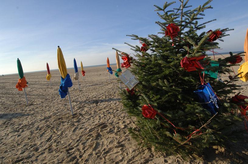 Choinka na plaży w Deauville, w zachodniej Francji /MYCHELE DANIAU /AFP