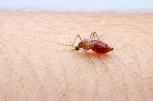 Chore dzieci pomagają stworzyć szczepionkę przeciwko malarii