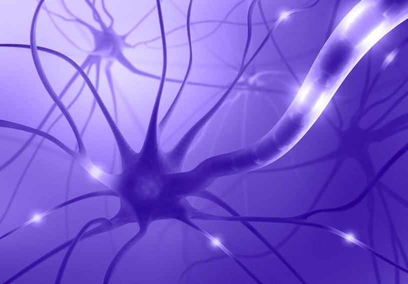 Choroby Alzheimera można uniknąć? /123RF/PICSEL