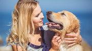 Chroń psa przed kleszczami