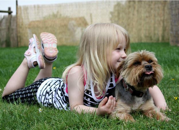 Chwal dziecko, gdy dba o zwierzę /© Panthermedia