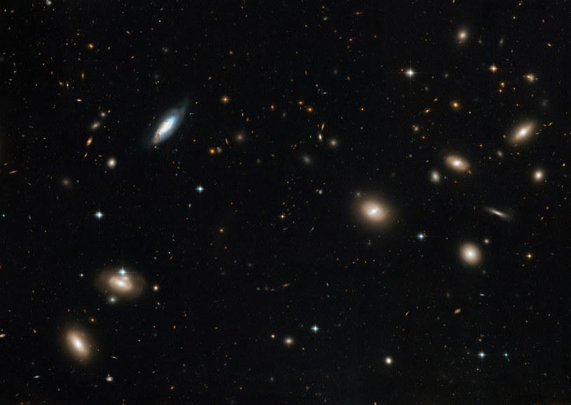 Ciemna materia może stanowić nawet około 80 procent całkowitej materii obecnej we wszechświecie. /AFP