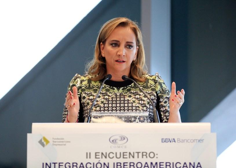 Claudia Ruiz Massieu /MARIO GUZMAN    /PAP