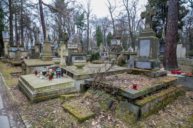 Cmentarz Rakowicki, zdj. ilustracyjne /East News