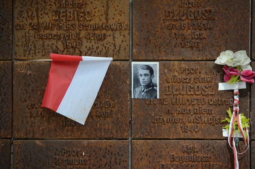 Cmentarz Wojskowy w Katyniu /Wojciech Pacewicz /PAP