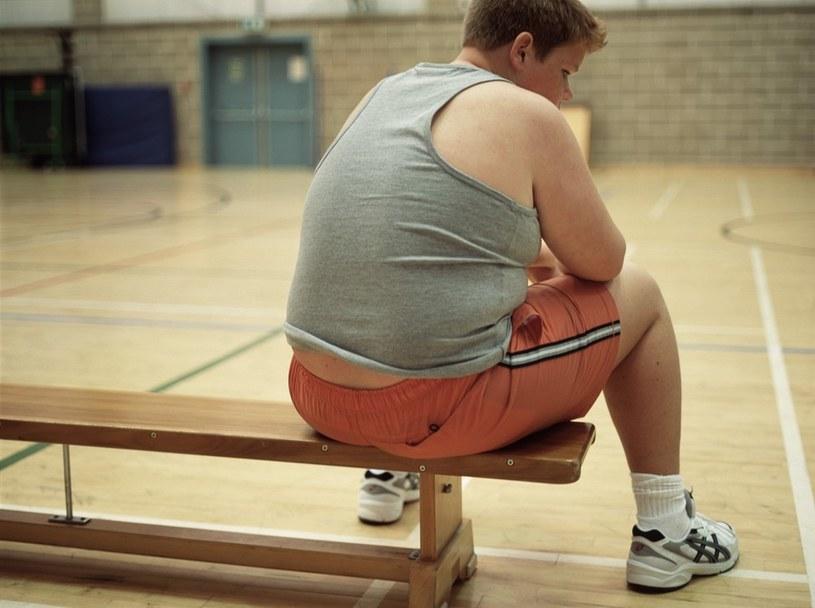 Co czwarty uczeń szkoły podstawowej ma nadwagę lub jest otyły /Science Photo Library /East News