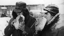 Co Polacy jedli podczas okupacji? Szokujące potrawy