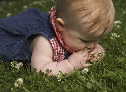 Co zrobić, gdy pojawi się zaczerwienienie i swędzenie? /ThetaXstock