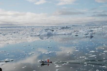 Cofający się lodowiec Illulisat na Grenlandii, symbol i argument zwolenników globalnego ocieplenia /AFP