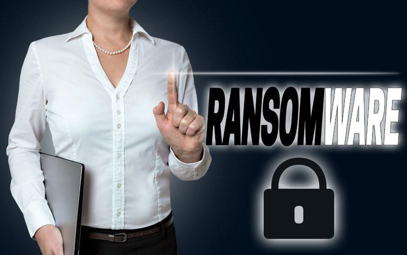 Coraz częściej ofiarami ataków ransomware padają małe i średnie firmy /123RF/PICSEL