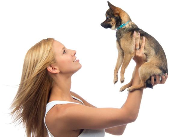 Coraz więcej osób rekompensuje sobie brak dzieci posiadaniem psa /©123RF/PICSEL