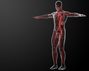 Cukrzyca rozszczelnia układ limfatyczny