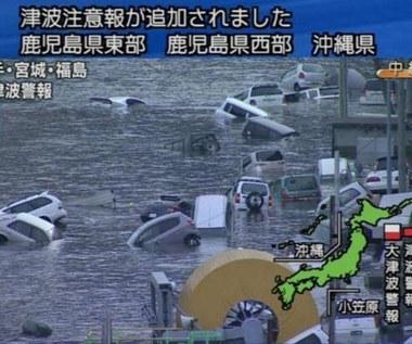 Cyberataki związane z trzęsieniem ziemi w Japonii