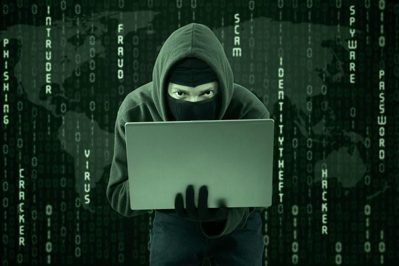 """Cyberprzestępcy nieustannie próbują rozwijać swój nielegalny biznes - firma Kaspersky Lab zebrała kilka przykładów ich """"interesującej"""" działalności /©123RF/PICSEL"""