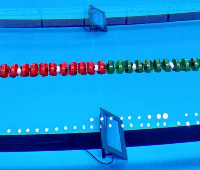 Cyfrowe liczniki okrążeń mają pomóc pływakom /materiały prasowe