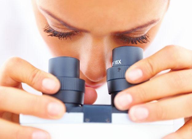 Cytologia może uratować życie /INTERIA.PL/PAP