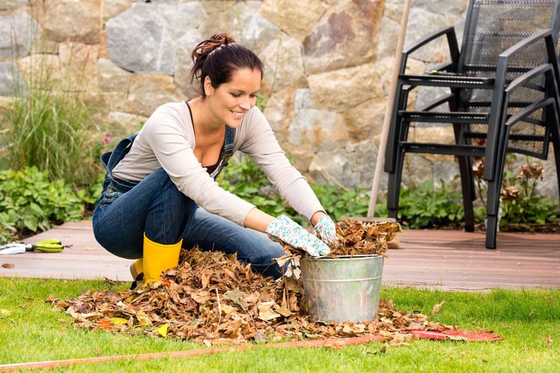 Czas na ostatnie prace w ogrodzie /©123RF/PICSEL