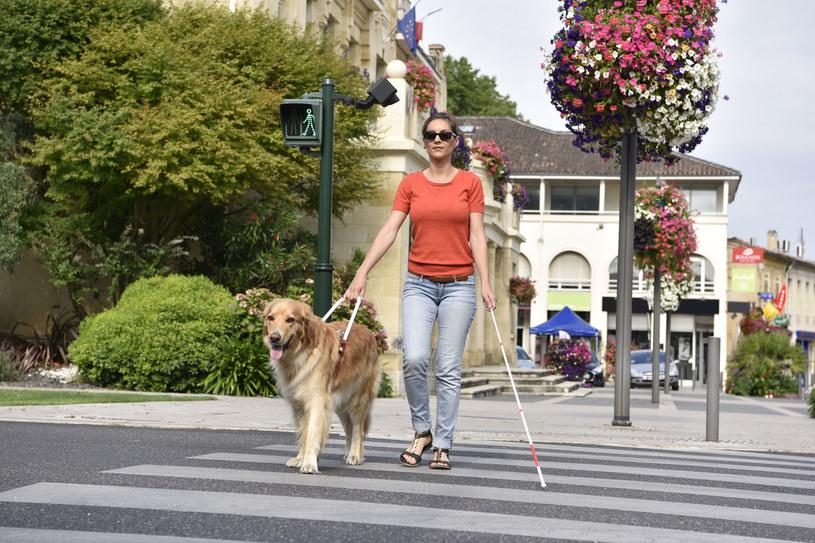 Czasami osoby niewidome mogą dostrzegać poruszające się przedmioty - jak to możliwe? /123RF/PICSEL