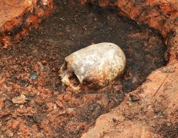 Czaszka odnaleziona na stanowisku archeologicznym Arkaim /Innemedium.pl
