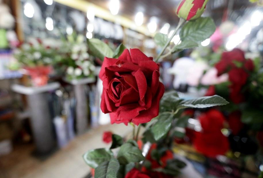 Czerwone róże to jedne z najczęściej wybieranych kwiatów w Walentynki. /LEGNAN KOULA /PAP/EPA