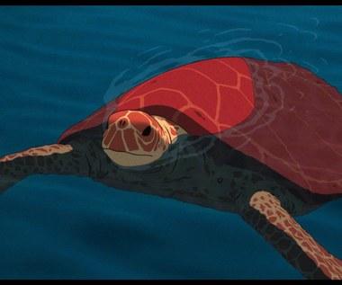 """""""Czerwony żółw"""""""