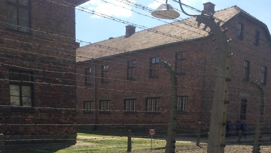 Część szczątków bombowca Fundacja zaprezentuje podczas uroczystości 73. rocznicy wyzwolenia Auschwitz. Zdj. ilustracyjne /Archiwum RMF FM