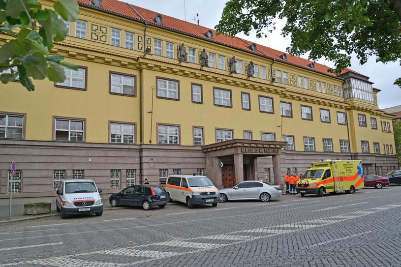 Czescy lekarze będą uczyć się języka polskiego (zdj. ilustracyjne) / Irina Borsuchenko /123RF/PICSEL