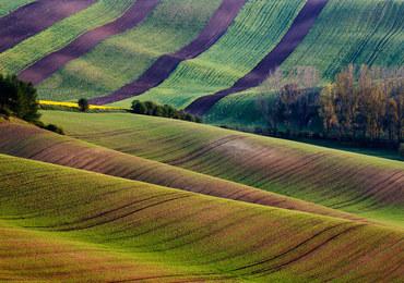 Czeskie Morawy. Uroki Toskanii w dobrej cenie