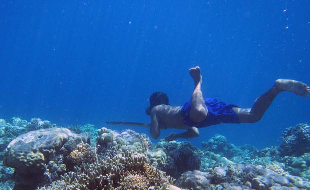 Człowiek może nauczyć się żyć pod wodą. Trochę...