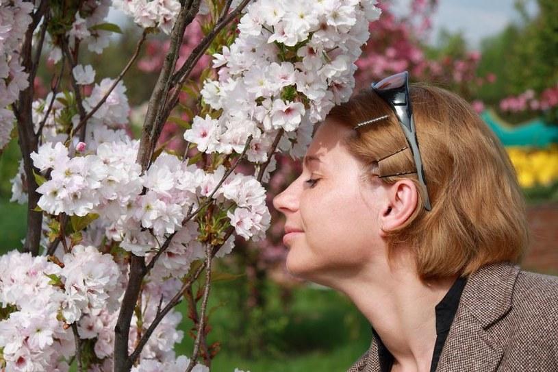 Człowiek rozróżnić co najmniej bilion zapachów. /©123RF/PICSEL