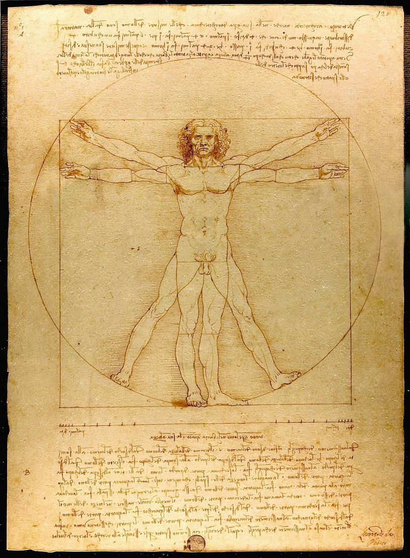Człowiek witruwiański, DaVinci.  Fot. Luc Viatour /Wikipedia