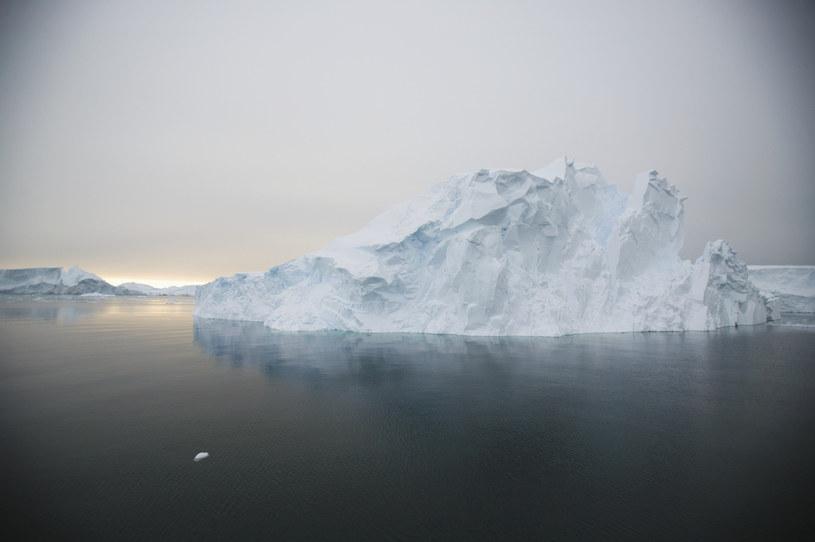 Czy Antarktyda tętni życiem? /© Glowimages
