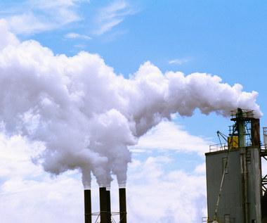 Czy czeka nas kulawy kompromis w sprawie CO2?