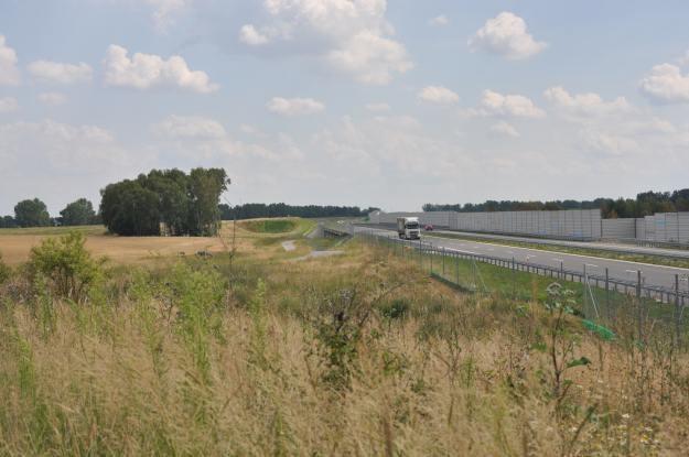 Czy drogi muszą szkodzić przyrodzie? / fot. Mateusz Grzeszczuk/GDDKiA /