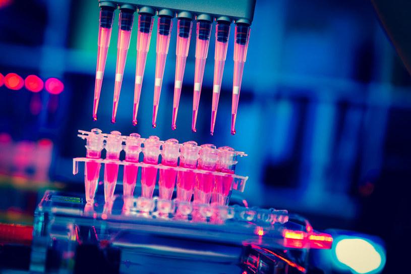 Czy dzięki immunoterapii uda się pokonać nowotwory? /©123RF/PICSEL