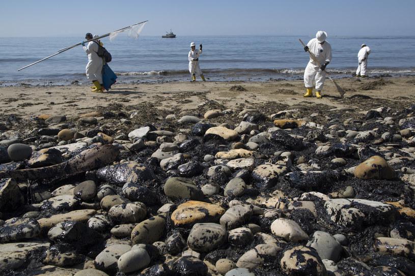 Czy grozi nam masowe wymieranie gatunków? /AFP