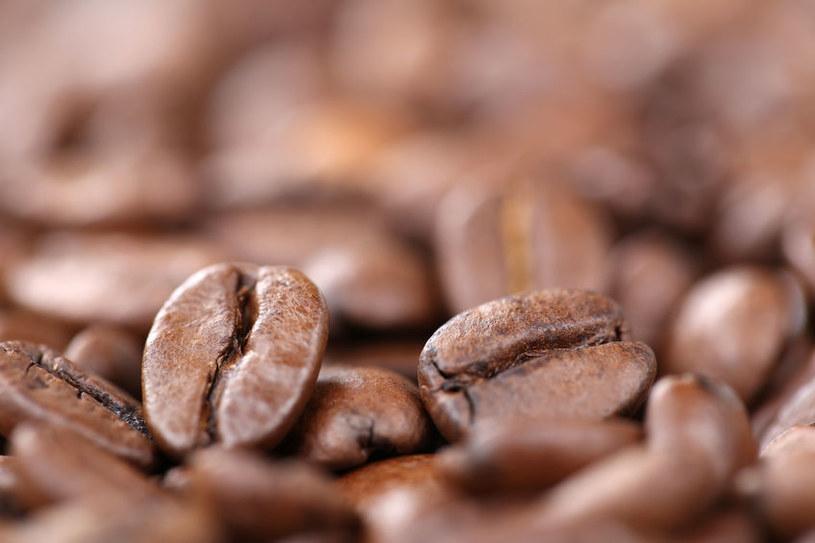 Czy kiedyś na świecie zabraknie kawy? /123RF/PICSEL