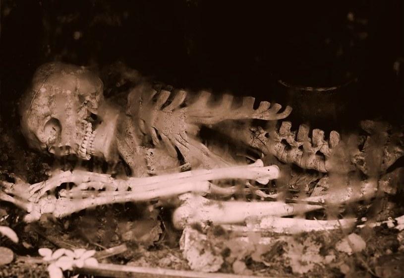 Czy kiedyś nowotwory faktycznie nie występowały? Okazuje się, że 3200 lat temu już były obecne /©123RF/PICSEL