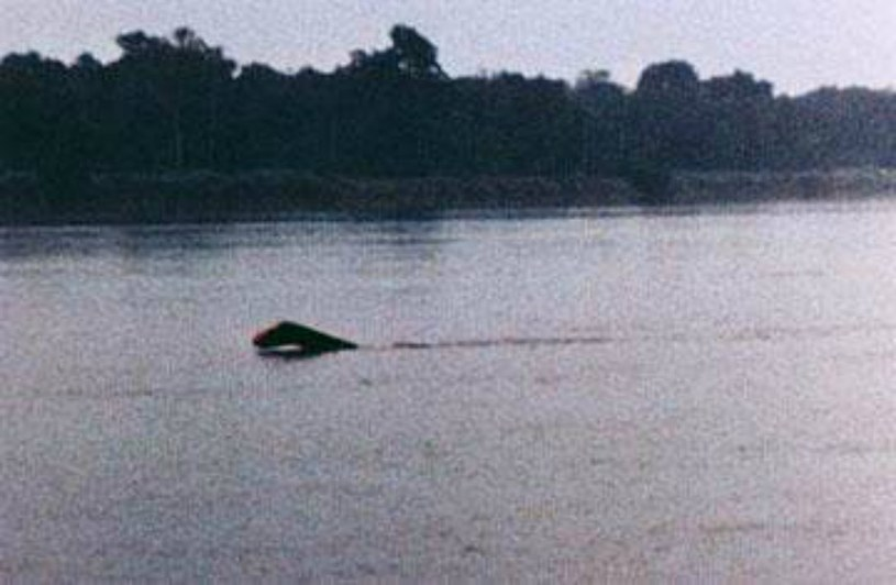 Czy na tym zdjęciu zrobionym nad jeziorem Tele możemy zobaczyć mokele-mbembe? /YouTube