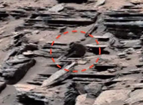 Czy na zdjęciach z Marsa kolejny raz odkryto dowód na istnienie życia na tej planecie? /Innemedium.pl