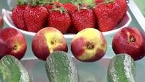 Czy pestycydy zagrażają naszemu zdrowiu?
