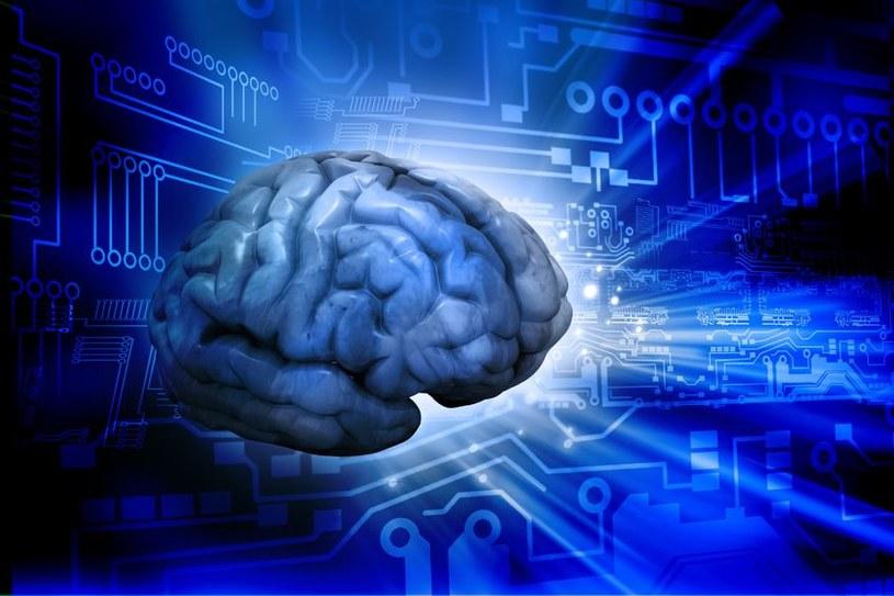 Czy pewnego dnia sztuczna inteligencja dorówna inteligencji ludzkiej? /©123RF/PICSEL