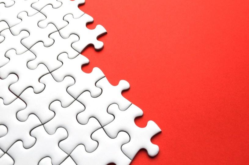 Czy polskie firmy mogą podczas ekspansji zagranicznej współpracować? /123RF/PICSEL